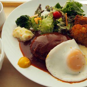 煮込みハンバーグ&白身魚フライ定食